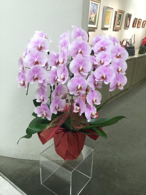 お祝いの花 レザークラフト教室 革工芸教室