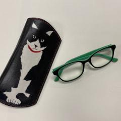 Sさんの眼鏡ケース