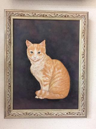 フィギャアカービング 猫