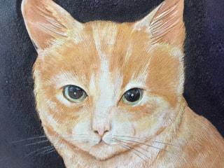 フィギュアカービング 猫 顔アップ