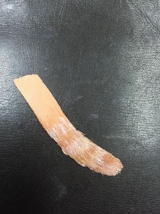 レザークラフト 猫の尻尾