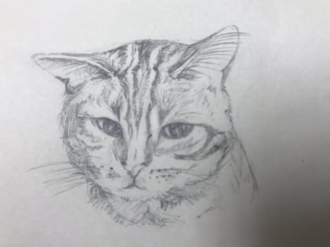 フィギュアカービング 猫スケッチ レザークラフ教室 革工芸教室